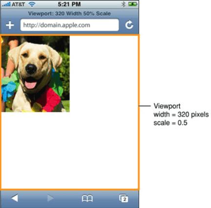 viewport 320 pixels scale = 0.5